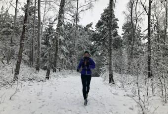 vinter.JPG3