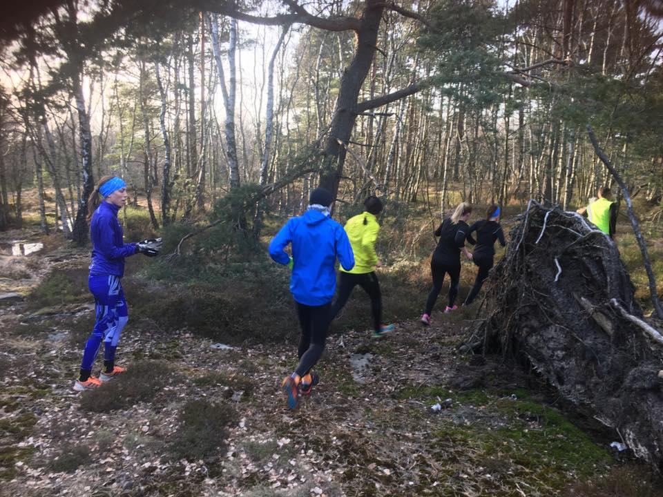 göteborg trail