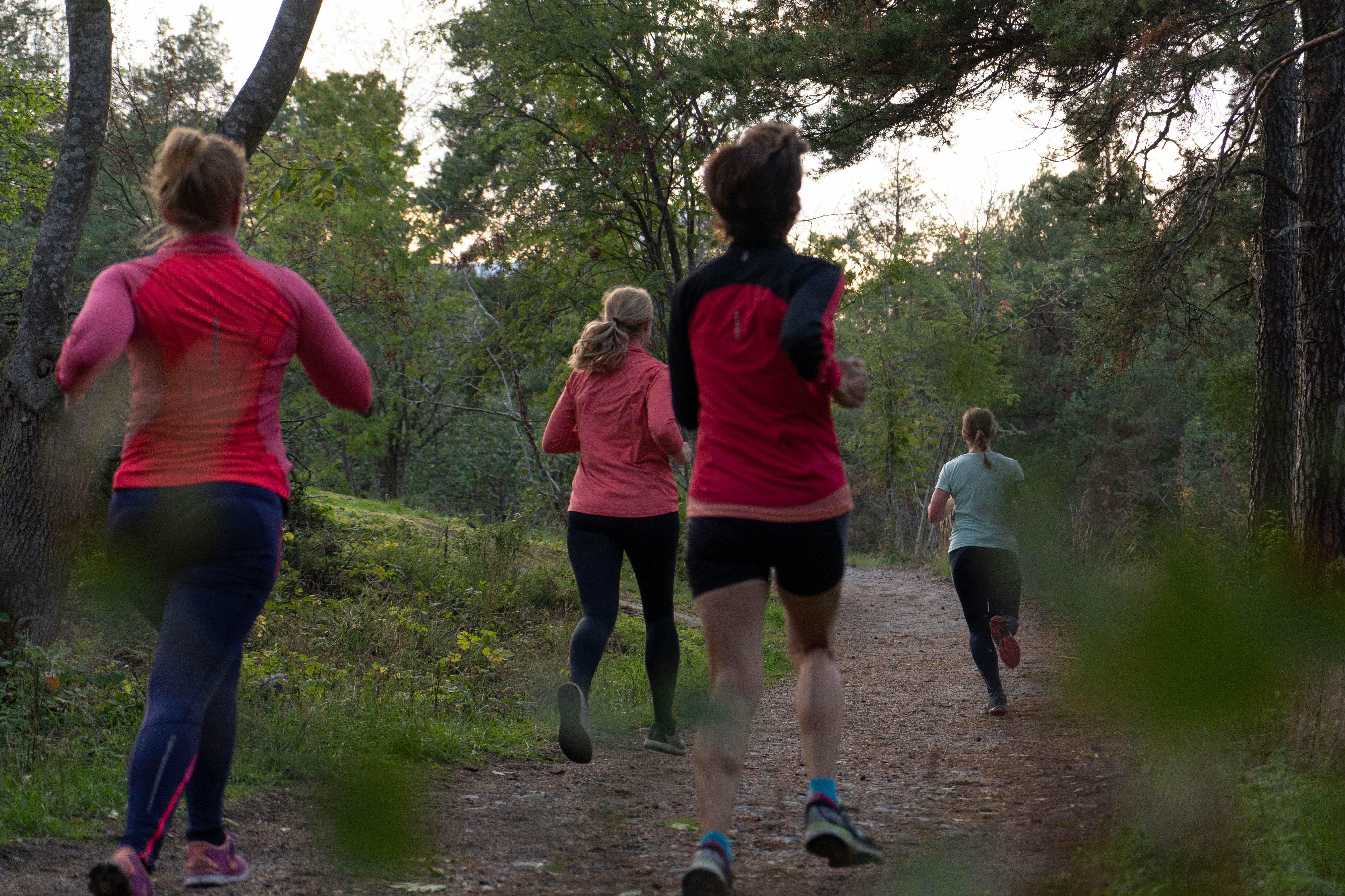 springa eller gå bränna fett