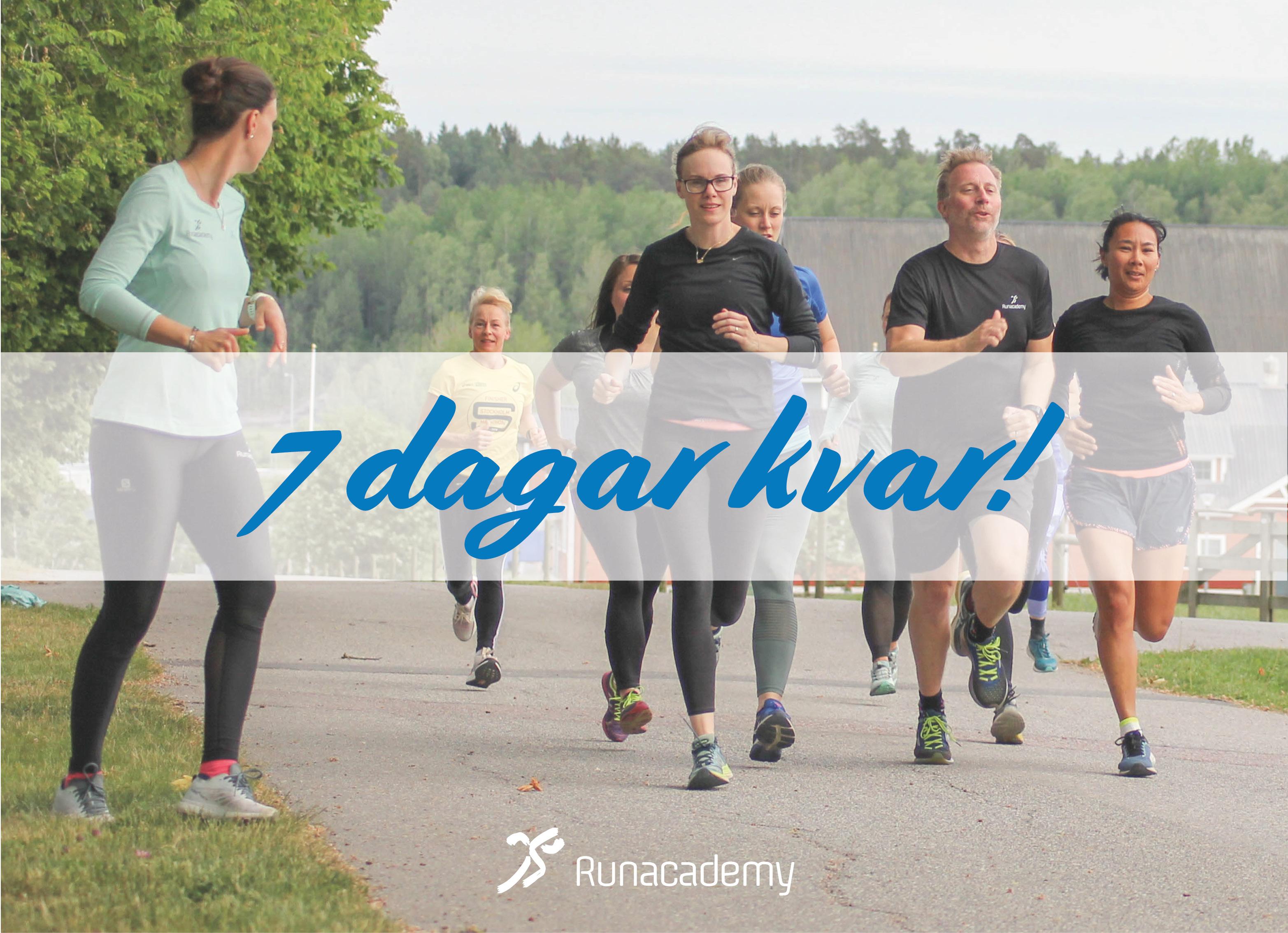 Varför ska man träna med Runacademy? Runacademy